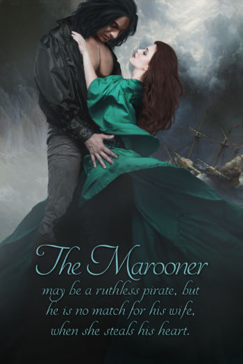The Marooner stepback arttt of pirate and wife. Book by Barbara Devlin.